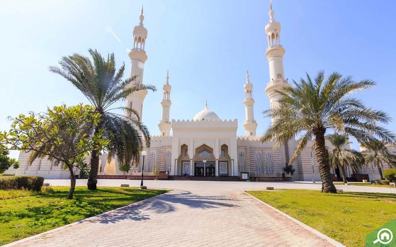 Sheikh Zayed Mosque - 19 Dec