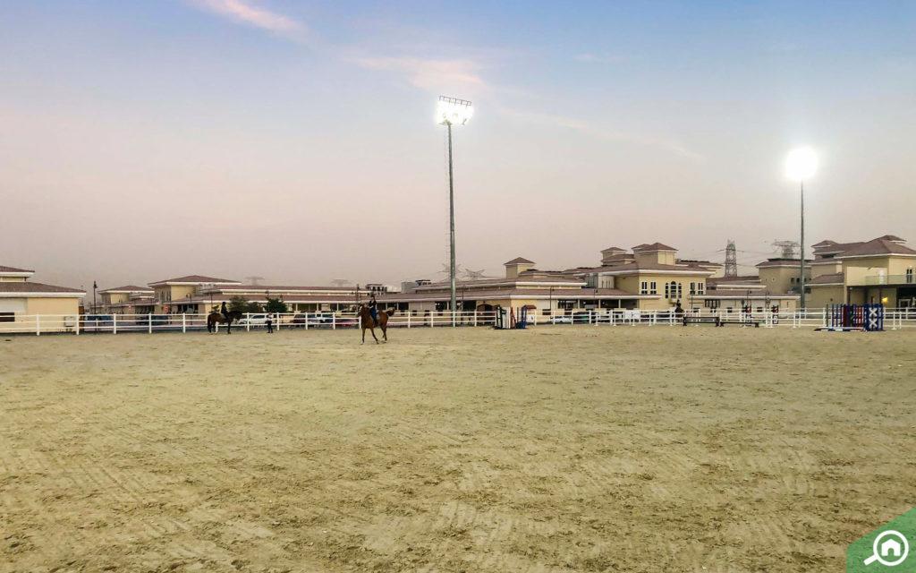 منتجع ونادي الحبتور للبولو دبي