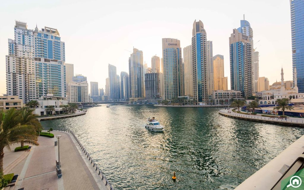 dubai marina walk near marina diamond 5