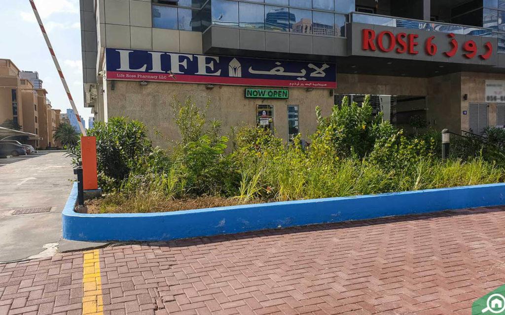 صيدلية لايف