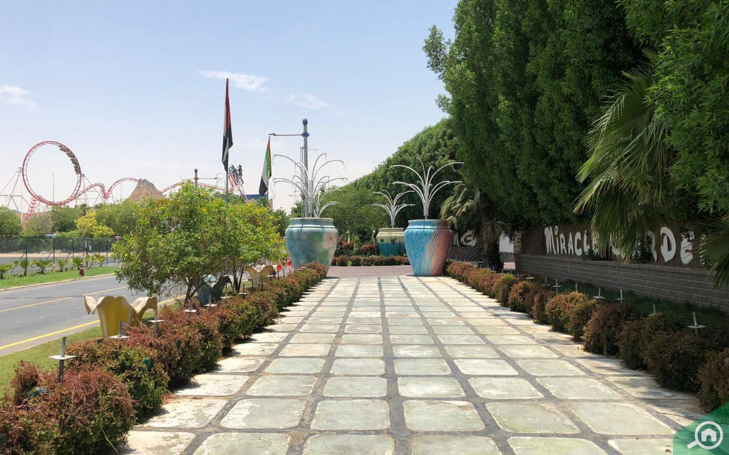 A walking trail leading to Dubai Miracle Garden, near The Lily
