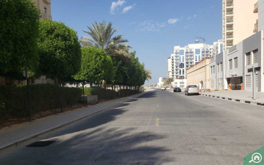 Azizi Orchid street view