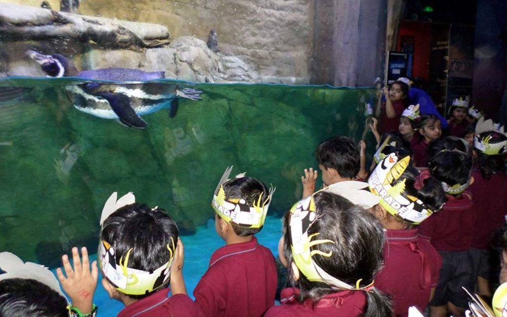 Trip to Dubai Aquarium