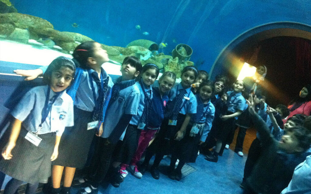 Field trip to Sharjah Aquarium arranged by GEMS Westminster School